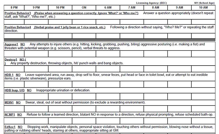 A sample list of behaviors, both appropriate/positive and inappropriate. This is from the daily recording packet that is used to track each student or client's behaviors, which will be entered into the database for ongoing charting of improvement. Each list contains behaviors specific to the student or client.